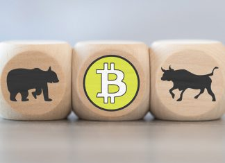 Bitcoin bear bull beer stier markt